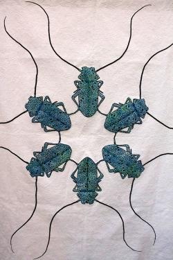 Beetlemania, Gladys Racette